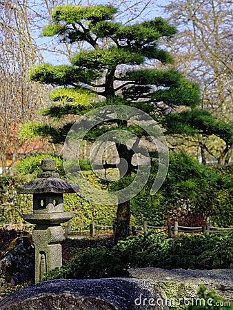 Free Japanese Garden Landscaping Detail Royalty Free Stock Photo - 88764265