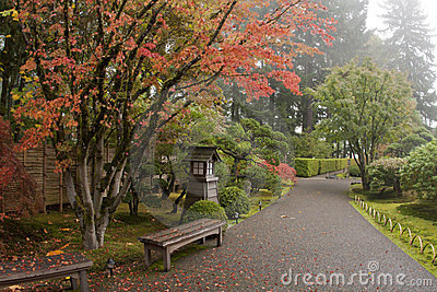Japanese Garden path - Wide Angle