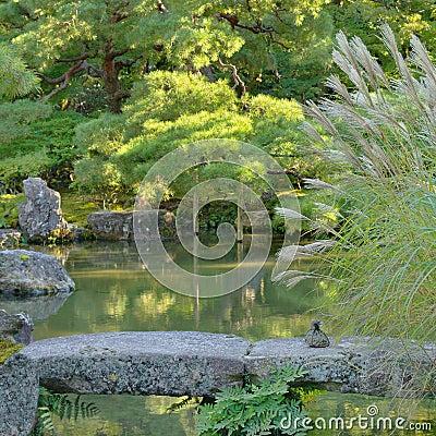 Japanese garden with pond and stone bridge