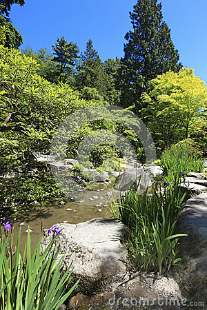 Japanese Garden in Seattle, WA. Stones with irises and pond.