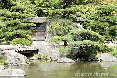 Japanese garden with a traditional gate