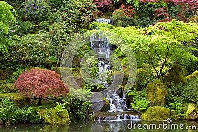 Japanese Gardens Waterfall Landscape
