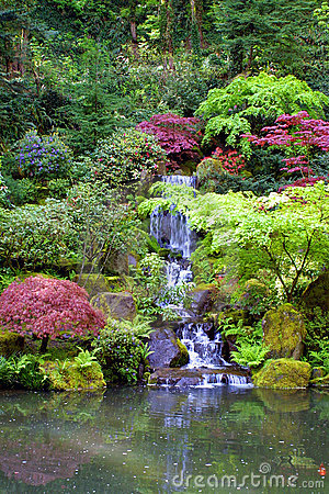 Free Japanese Gardens Waterfall Portrait Royalty Free Stock Photo - 1502605