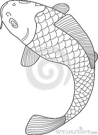 Japanese Koi Fish Vector