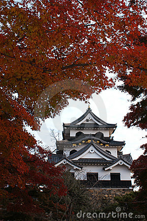 Japanese old castle in Hikone