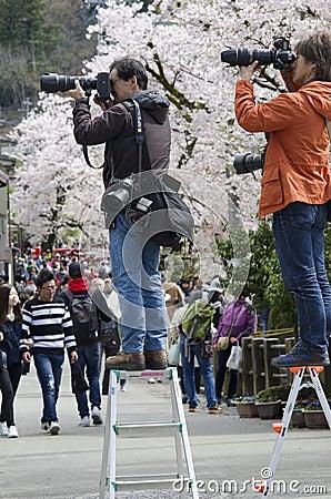 Free Japanese Photographers Royalty Free Stock Images - 122205039