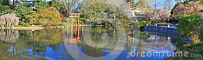 Japanese Pond Spring Panorama