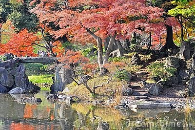 A japanese style garden and lake in autumn