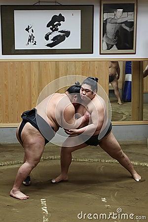 Free Japanese Sumo At Sumo Training Royalty Free Stock Photos - 26062708