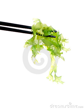 Free Japanese Sushi Algae Stock Photography - 3856792