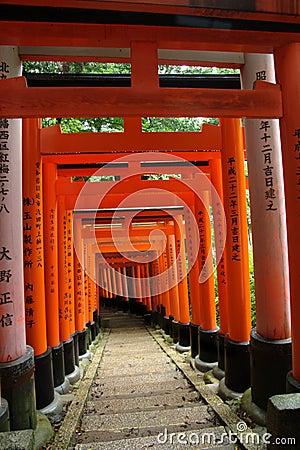 Japanese Torii (Shinto gates)