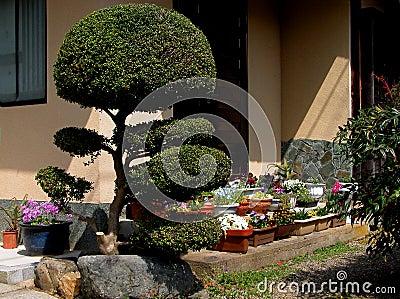 Japanese veranda