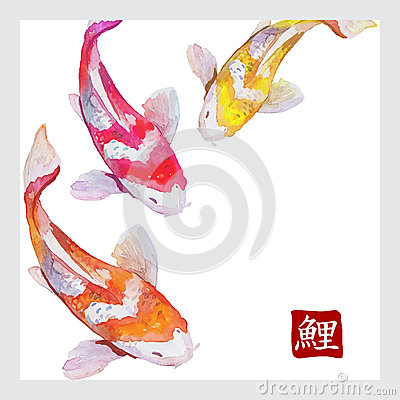 Free Japanese Watercolor Carps Koi Swimming Royalty Free Stock Image - 51525036