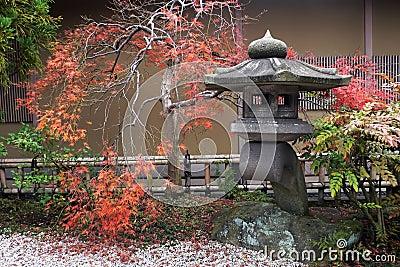 Japanische Laterne und herbstlicher Ahornholzbaum
