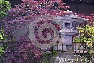 japanischer steingarten stockfoto bild 21636650. Black Bedroom Furniture Sets. Home Design Ideas