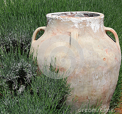 Jar in Green Grass
