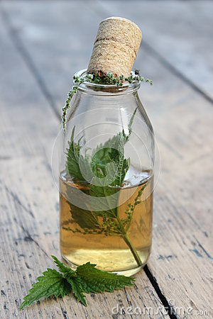 Free Jar With Alcohol Tincture And Nettle Leaves Stock Photos - 73903893
