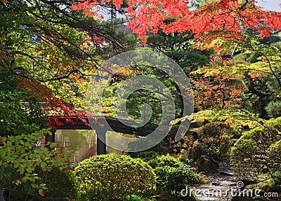 Jardín del templo de Rinoji