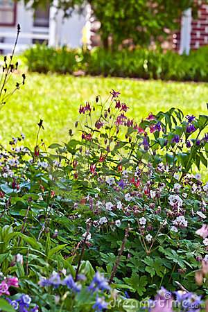 Jardín perenne casero