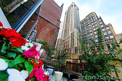 Jardín y rascacielos de la terraza