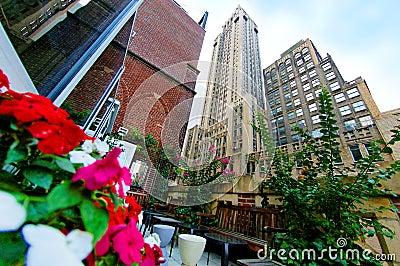 Jardim e arranha-céus do terraço