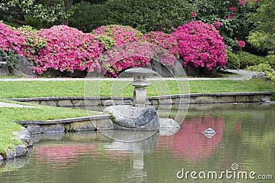Jardim japonês pitoresco