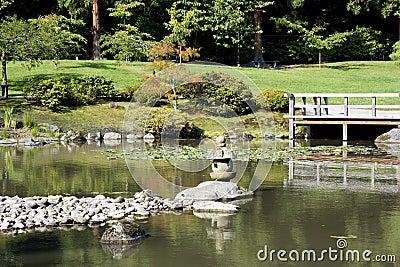 Jardim japonês pitoresco com lagoa