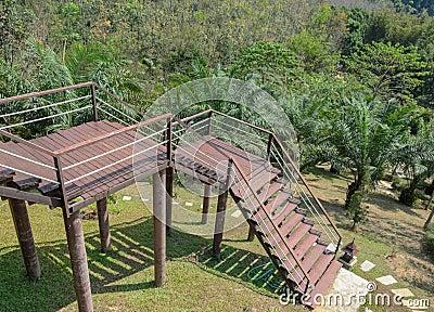 Jardin avec l 39 escalier photo stock image 54539339 for Jardin avec escalier