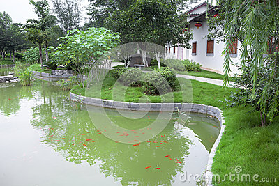 Jardin chinois avec l 39 tang poissons photo stock image for Conception jardin chinois