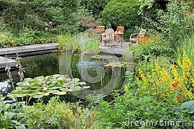 Jardin d 39 t avec un tang photos stock image 6117983 for Achat poisson etang