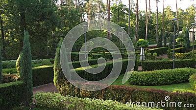 Jardin français dans le parc central de Bucha clips vidéos