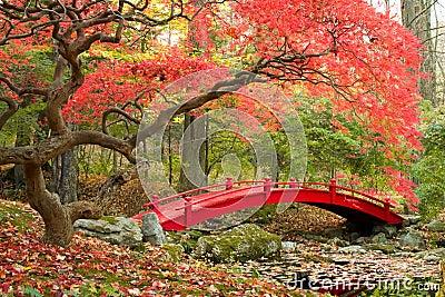 jardin japonais et pont rouge image libre de droits image 33479566. Black Bedroom Furniture Sets. Home Design Ideas