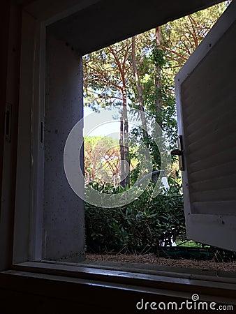 Jardin par la fen tre ouverte photo stock image 57712124 for Par la fenetre ouverte comptine