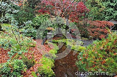 Jardines japoneses fotos de archivo imagen 7320583 - Fotos jardines japoneses ...