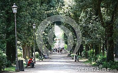jardins de borghese de villa de parc rome italie image stock ditorial image 41874734. Black Bedroom Furniture Sets. Home Design Ideas