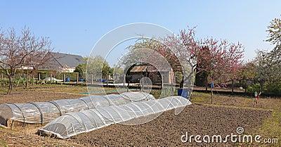 Jardín del resorte