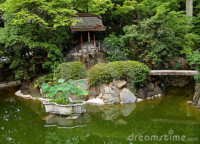 Jardín japonés verde