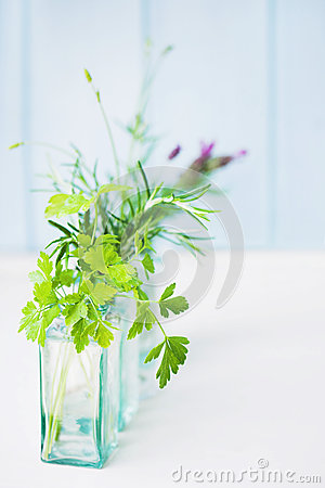 Jars of fresh herbs
