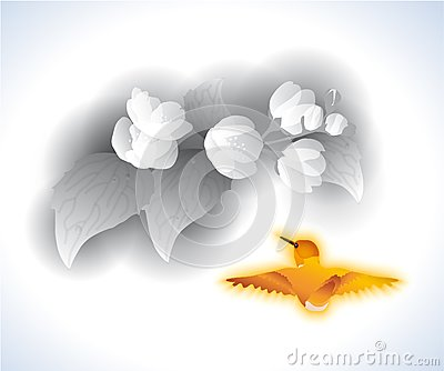 Jasmin пташки