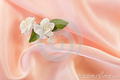Jasmine on pink fabric