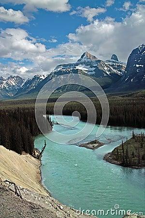 Jasper National Park, Alberta, Canada.
