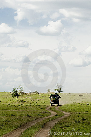 Jeep in the safari