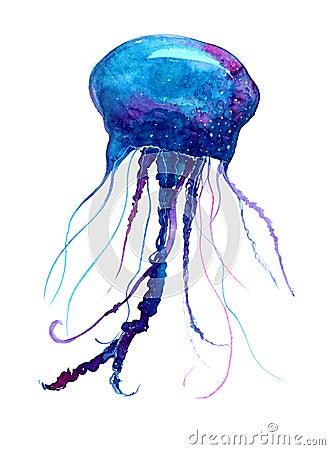 Jellyfish Watercolor Illustration Medusa Painting