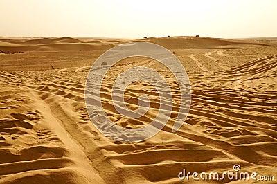 Jepps on the dunes of Sahara desert