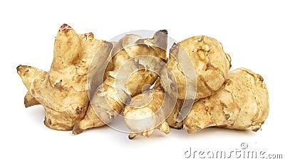 Jerusalem artichoke sunroot sunchoke tuber