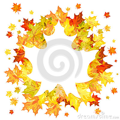 Jesień liście klonowi
