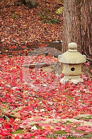 Jesień ogród