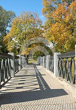 Jesień park