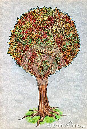 Jesieni drzewo