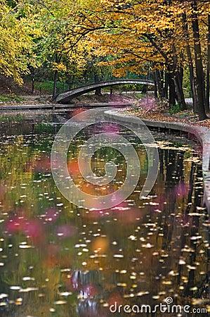 Jesienna parkowa rzeka